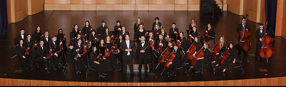 Davis High School Chamber Orchestra